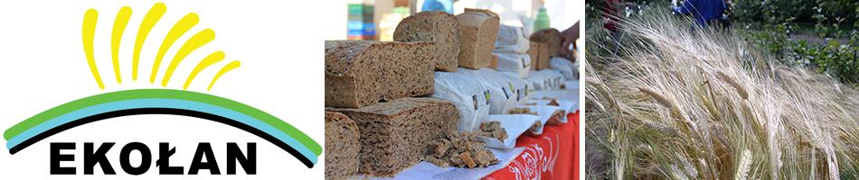Jarmark Żywności Ekologicznej