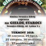 Giełda Staroci w Iwoniczu - Zdroju