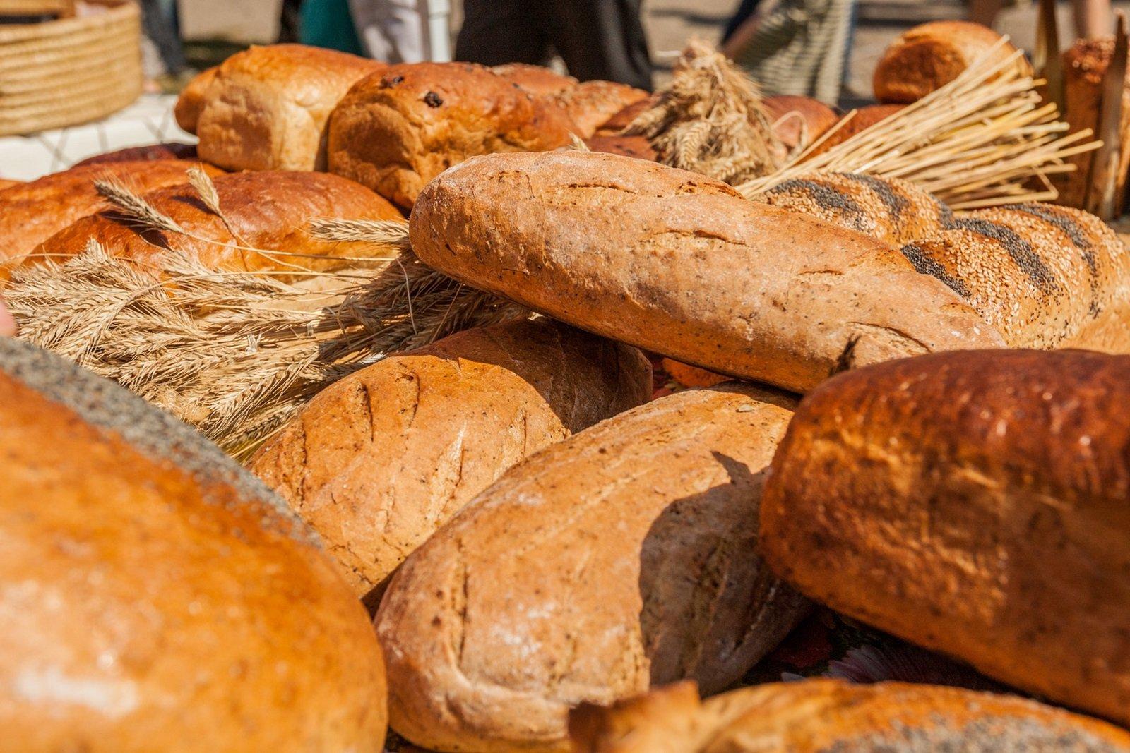 Podlaskie Święto Chleba