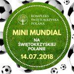 Mini Mundial na Świętokrzyskiej Polanie