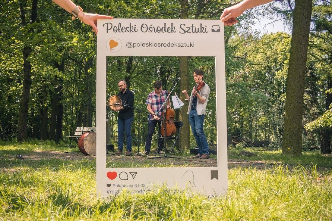 Koncerty, Pikniki, Warsztaty