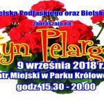 Festyn Pelargonia