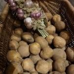 Dzień Kartofla - Jesień na Wsi