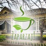 Festiwal Herbaty Zaparzaj