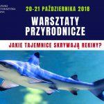 Warsztaty Przyrodnicze na Świętokrzyskiej Polanie