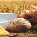 Mazowieckie Święto Chleba i Sera